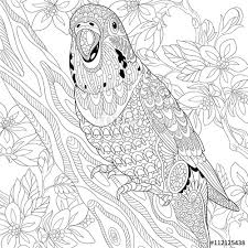 zentangle stylized cartoon budgie parrot among cherry blossom
