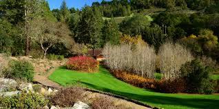 california native plants landscaping regional parks botanic garden american public gardens association
