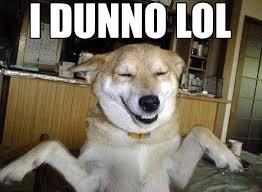 Idk Meme - i dunno lol 皴 皸 o 皴 know your meme