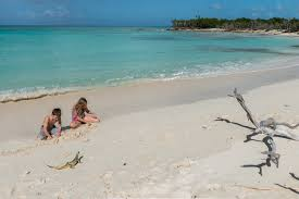iguana island travel guide turks and caicos 180360