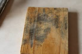 tips on how to remove mold from wood clean water partners