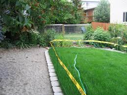 Garden Ideas For Dogs Attractive Friendly Backyard Landscaping Ideas Landscaping For