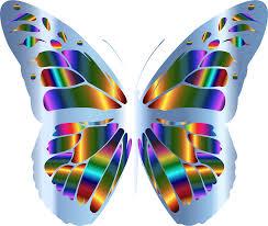clipart iridescent monarch butterfly 23