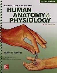 Hole Anatomy And Physiology 13th Edition Human Anatomy Physiology By Martin Direct Textbook