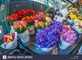 flowers for sale colorful tulips and other cut flowers for sale in the pike place