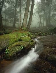 imagenes impresionantes de paisajes naturales los paisajes naturales más impresionantes de estados unidos traveler
