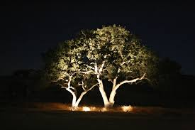 led lights for trees and outdoor as solar unique with on patio