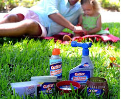 Cutter Bug Free Backyard Best 25 Best Insect Repellent Ideas On Pinterest Insect