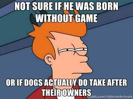 Dog Lady Meme - after watching my dog get snubbed by every lady dog at the park