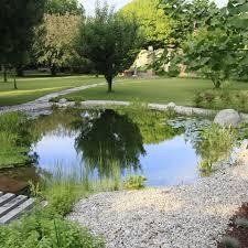 Laghetto Artificiale Fai Da Te by Come Realizzare Un Lago Per Le Carpe Koi Piante Fiori E Animali