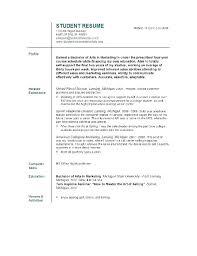 functional resume template 2017 word art functional resume sle luxsos me