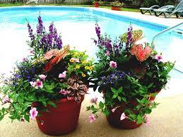 container garden ideas sun winter ukanting gardens for front porch