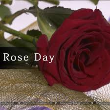 free egreetings day best free ecards http www happyvalentinesday co in