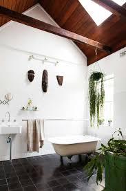 Plants For The Bedroom by Bathroom Best Indoor Plants For Bathroom 1 Plants For The