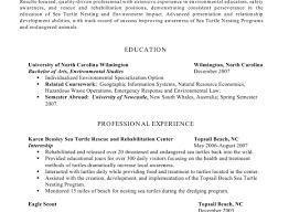 skill resume skills based resume template word skills based resume template