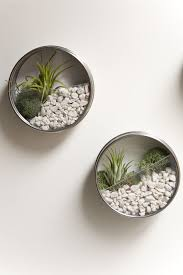 10 diy terrariums for every season