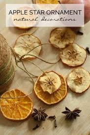 dried fruit garland how to crafts garlands craft