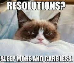 Grumpy Cat New Years Meme - pin by millie weston on had to laugh pinterest grumpy cat cat