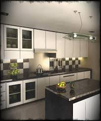 black and white kitchen ideas kitchen black and white kitchens pictures the popular simple
