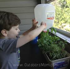 10 Vegetables U0026 Herbs You by Outdoorsmom The 10 Easiest Vegetables And Herbs To Grow In Flower