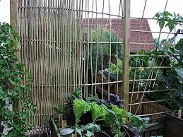rankgitter und sichtschutzelemente mit bambusstäben selber bauen