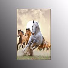 horse canvas print single promotion shop for promotional horse