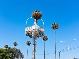 Free Baby Stuff In Los Angeles Ca Norwalk California Wikipedia