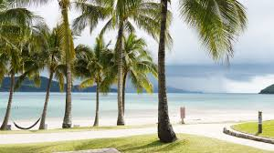hamilton island travel habit