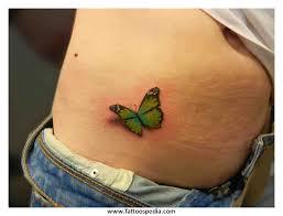 green butterfly green butterfly moth