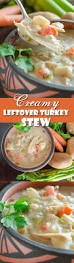 thanksgiving everyday soup best 20 seasoning for turkey ideas on pinterest taco burger