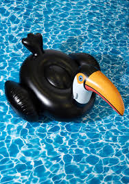flock on the wild side pool float in toucan you know how to make