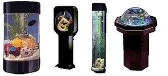 designer aquarium the wall aquarium superstore designer fish aquariums