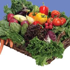 harvesting u0026 handling vegetables from a garden