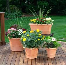 Patio Container Garden Ideas Enjoyable Patio Container Garden Ideas For Your Apartment Contaer