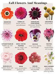 wedding flowers meaning flowers meanings best 25 flower meanings ideas on birth