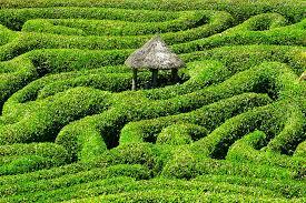 5 beautiful botanical gardens of the world dunheger