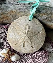 25 unique sand dollar decor ideas on sand dollars