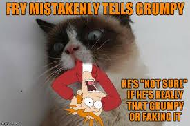 Meme Maker Fry - fry not sure imgflip