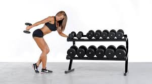 Dumbbell Exercises On Bench Part 2 Top 16 Dumbbell Exercises With The Powertec Workbench