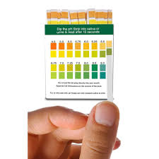 buy saliva and urine ph test strips diagnose and prevent common