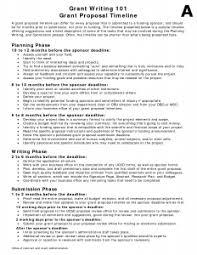non profit business plan sample pdf