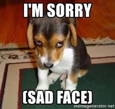 Puppy Face Meme - i m sorry sad face sad puppy meme generator