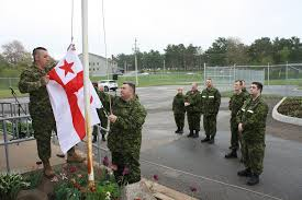 Mi Flag News Royal Canadian Air Force News Article Flag Raising