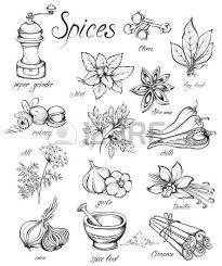 les herbes de cuisine 53584915 set herbes de cuisine et les pices dessin la