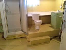 Basement Bathroom Ideas Designs Bathroom Archaiccomely Basement Bathroom Designs Photo Overview