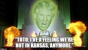 Wizard Of Oz Meme - wizard imgflip