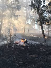 Large Wildfire Definition by Wildfire Southwest Of Conifer Contained Fox31 Denver