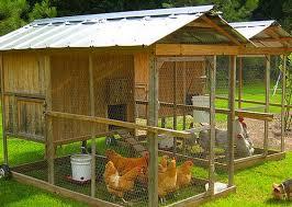 Backyard Chicken Coop Ideas Chic Backyard Chicken Coop Ideas Chicken Coop Ideas Designs And