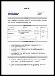 exles of resume title beautiful what is a resume cv title ideas entry level resume