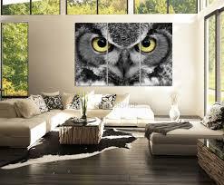 large wall art 3 panel canvas print great owl eye captive bird